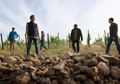 Paul Hobbs and team walk through our estate vineyard in Napa Valley